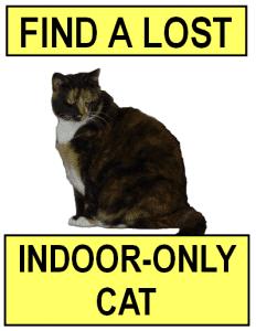 Find a Lost Indoor Cat