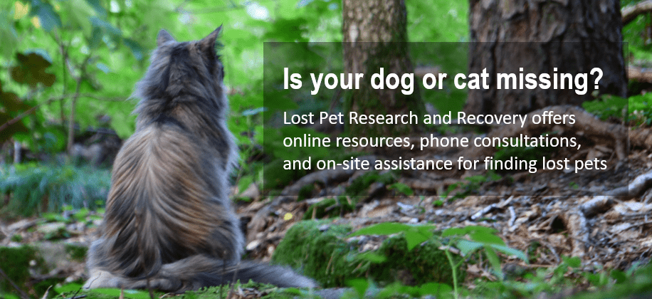 Is your dog or cat missing?