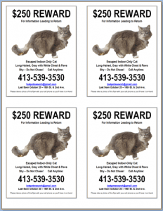 You can shrink a full-size lost cat flyer and fit several on a page.