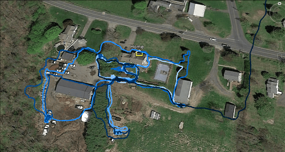Map showing trails of a cat throughout their home range and a single trail leading away.