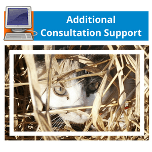 Additional Consultation Support