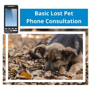 Basic Lost Pet Phone Consultation