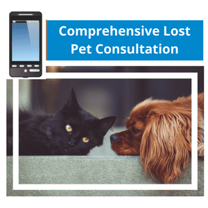 Comprehensive Lost Pet Phone Consultation