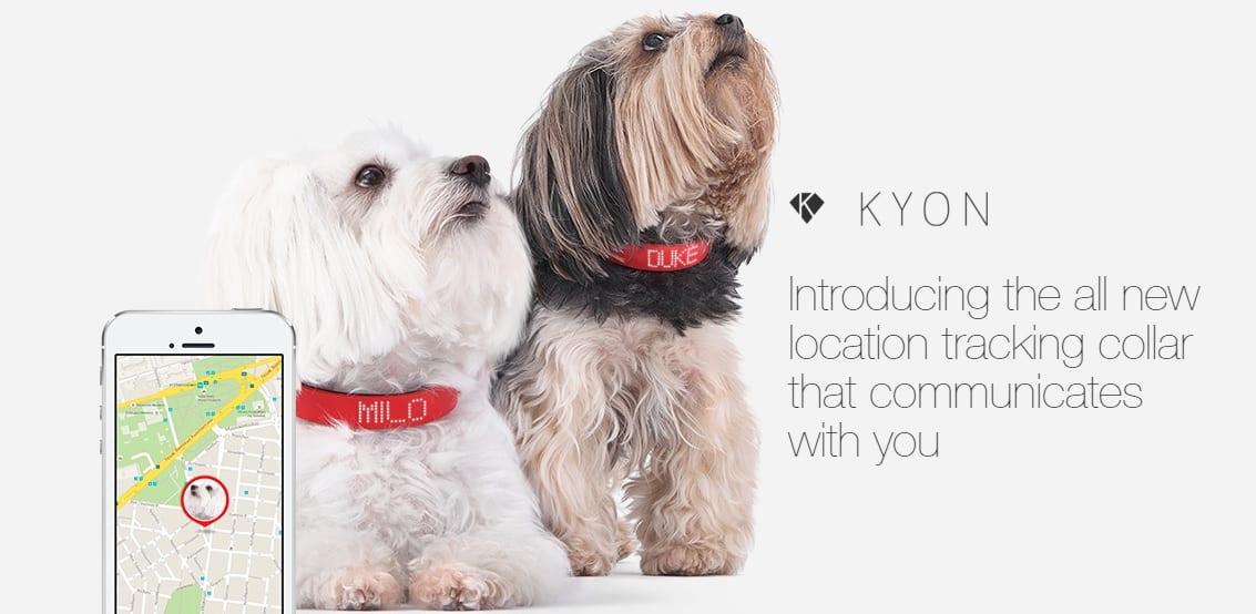 Kyon Collar Photo 1