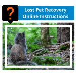 Lost Pet Recovery Online Instructions
