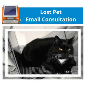 Lost Pet Email Consultation