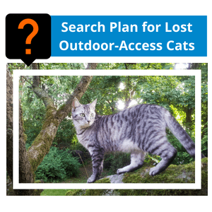 Search Plan for Lost Outdoor-Access Cats