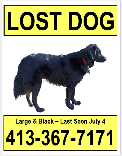 Small Dog Poster No Reward - Lost Pet Research & Recovery
