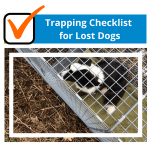Trapping Checklist for Lost Dogs