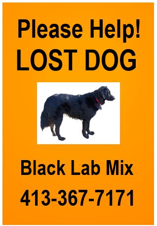 XXL Lost Dog Poster