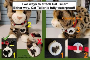Cat tailer on collar